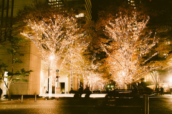 Marunouchi Illumination 2016-17-crossing road-Unseen Japan