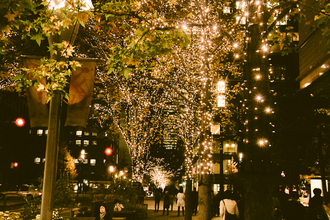 Marunouchi Illumination 2016-17-golden lights-Unseen Japan