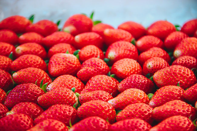 unseen-japan-strawberry-from-the-top-of-mountain-higashimiyoshi-tokushima