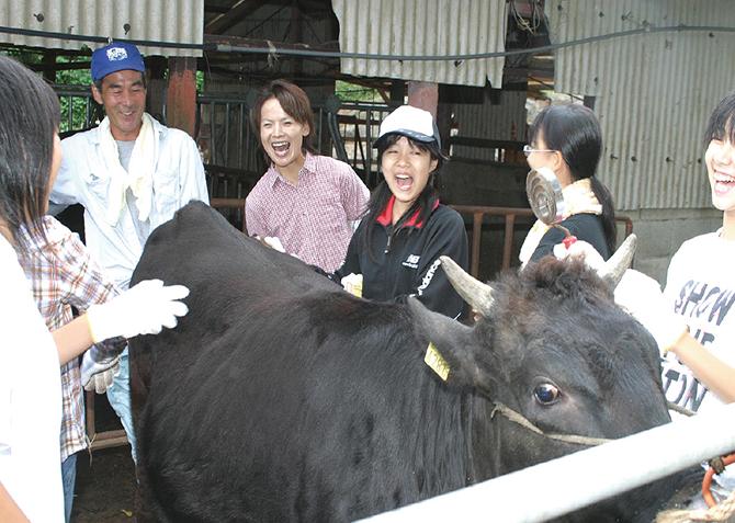 和牛農家体験